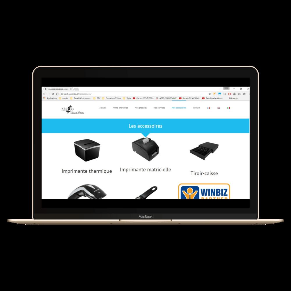 Présentation du site cash-gestion.ch sur laptop imac