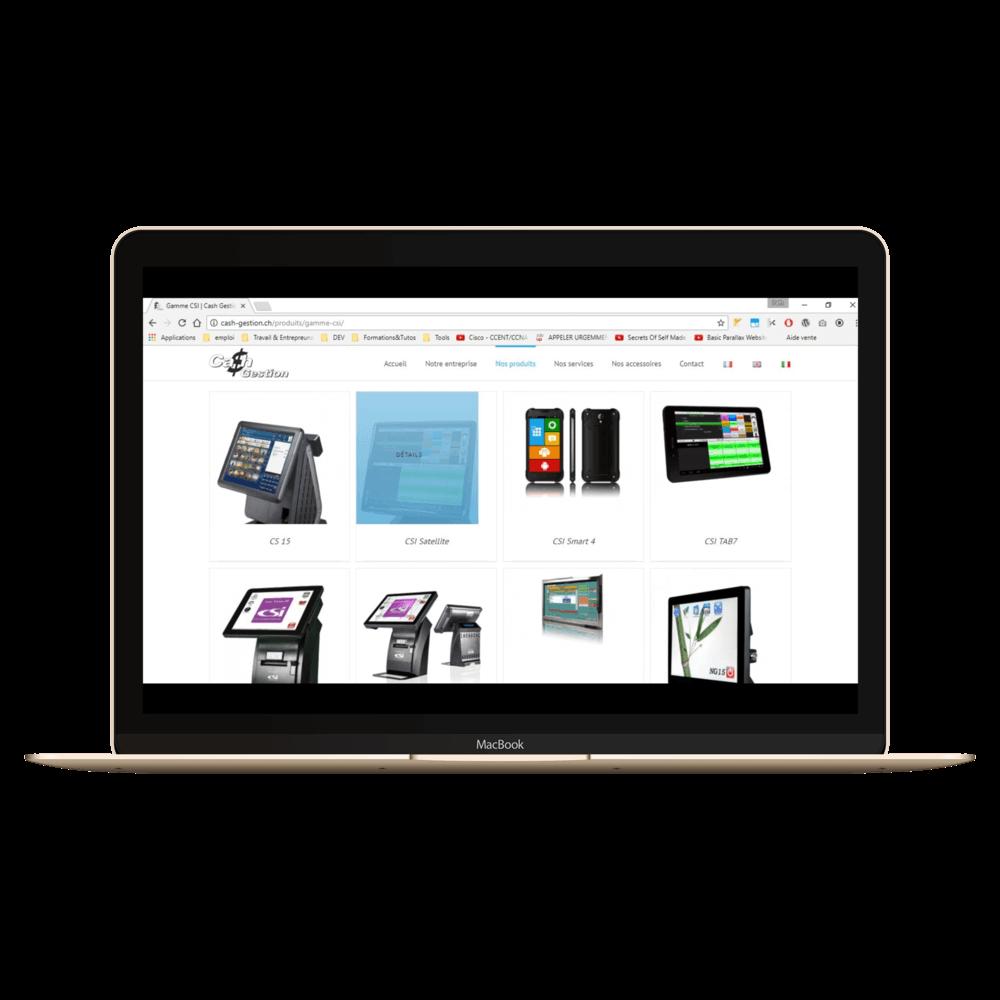 Présentation du site cash-gestion.ch sur laptop